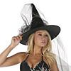 Hexen Hut mit Schleier