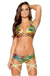 GoGo Shorts Set Rainbow Zebra